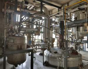 Production Site: Massive Reaction / Distillation Capacity (3 of 3)