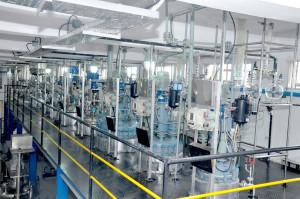 Batch Reactors Pilot Plant 2