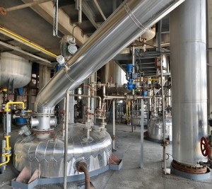 Extensive Reaction / Distillation Capabilities